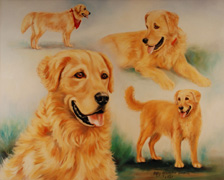 Examples of Portraits of Dogs, Cats, & Pets by Patsy Arrington Dorsett