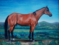 Examples of Portraits of Equine by Portrait Artist Patsy Arrington Dorsett